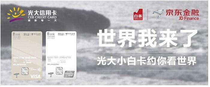 光大京东白条信用卡